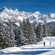 Winterlandschaft © CoenWeesjes/ TVB Filzmoos