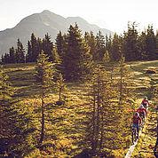 © Landhotel Schuetterbad - Mountainbiken