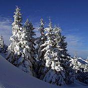 Winterimpression Saalachtal