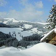 © Landhotel Schwaiger - Das Almenland im Winter
