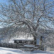 © Landhotel Schwaiger - Winterlandschaft