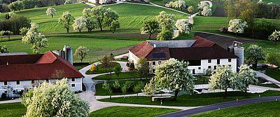 Basse-Autriche