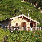 © Landhotel Traunstein - hauseigene Wandalm direkt am Tennengebirge mit Uebernachtungsmoeglichkeit