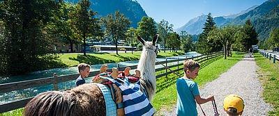 Pays de Salzbourg