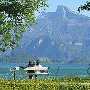 © TVB MondSeeLand - Blick auf den See und Schafberg vom Almeidapark