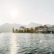 Seeansicht zum Landhotel Das Traunsee