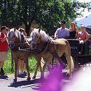 Ausfahrt mit der hoteleigenen Pferdekutsche