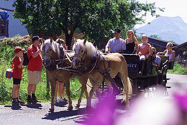 Pferdekutschenfahrt mit eigener Kutsche