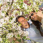 Pärchen in romantischer Urlaubsstimmung während der Apfelblüte