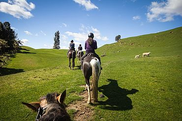 Ausritt mit dem Pferd im Pillerseetal