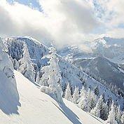 Landhotel Wiedersbergerhorn - Winterlandschaft Alpbachtal: ein echtes Skijuwel