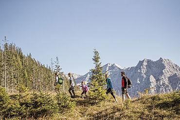 Wandern Steinplatte Waidring, © Defrancesco