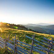 Sommertag im Almenland