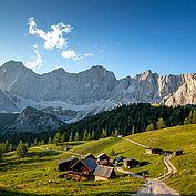Wandern Alm Ramsau am Dachstein2 © Tom Lamm