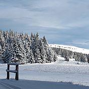 Winterimpression2 © Joglland Waldheimat Zingl M.