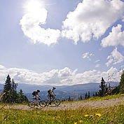 Sommer Mountainbiker © Ferienregion Lungau