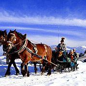 © TVB Abtenau - Winterliche Pferdekutschenfahrt durch Abtenau