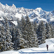 Zimní krajina © Coen Weesjes / TVB Filzmoos