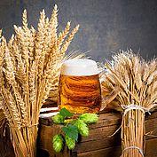 Biergenuss in seiner Reinheit