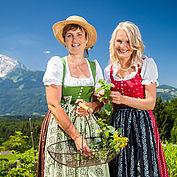 Untereggs Krautgarten © Tennengau