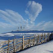 © TVB Almenland, Foto Tödtling, Bärenzaun