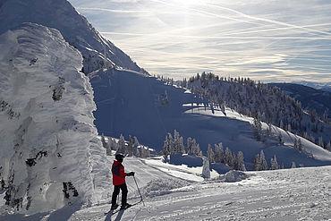 Skiregion Dachstein West, (c) OÖ Seilbahnholding
