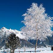 Tiroler Winterlandschaft - Steinberge