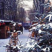 Advent in Steyr, (c) Oberösterreich Tourismus GmbH Heilinger