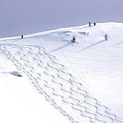 Landhotel Wiedersbergerhorn - Skitourengehen und Tiefschneefahren in atemberaubender Naturkulisse