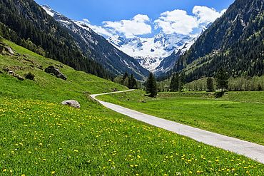 Wandern im Zillertal in Tirol