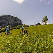 mit dem E-Bike die Landschaft genießen