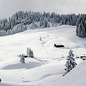 Salzkammergut Winterlandschaft (Braunedel), © STMG Fotograf: Wolfgang Stadler