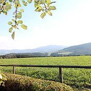 Landschaft in der Weitsicht © TV Joglland Waldheimat