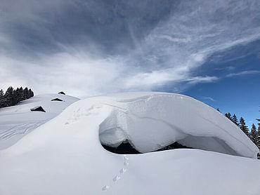 Traumhafte Winterlandschaften im Salzburger Saalachtal