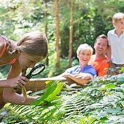 auf verschiedenen Themenwegen die Natur erkunden © Wildkogel-Arena Neukirchen und Bramberg
