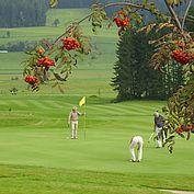 verschiedene Golfplaetze im Almenland