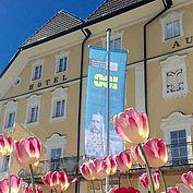 © Bad Ischl - Museum der Stadt Bad Ischl
