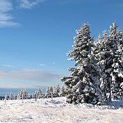 Winterimpression © Joglland Waldheimat Zingl M.