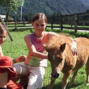 © Landhotel Strasserwirt - Pony Kinderspielplatz