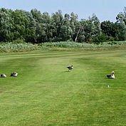 © Landhotel Birkenhof - Golf Donnerskirchen