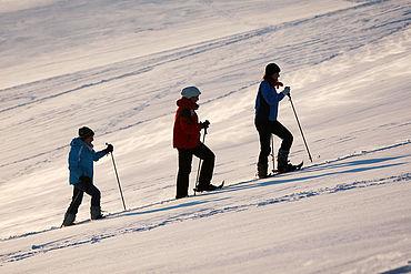 Schneeschuhwandern, © Mostviertel Tourismus, weinfranz.at