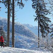 © Bad Ischl - Schneeschuhwanderung