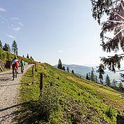 Mountainbike © Coen-Weesjes
