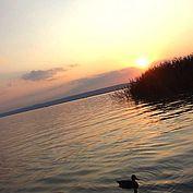 © NTG AGoeschl - Sonnenuntergang am Neusielder See