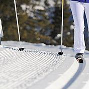 Běh na lyžích © Coen Weesjes / TVB Filzmoos