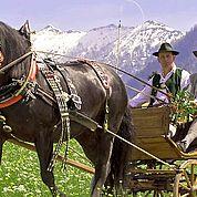 © TVB Abtenau - Sommerliche Pferdekutschenfahrt durch Abtenau