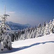 Winterlandschaft vom Kulmspitz am Mondseeberg, (c) TVB MondSeeLand