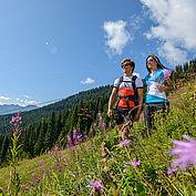 Ski amadé Sommerliftln 4 © Ski amadé