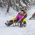 Rodeln der Winterspass für alle
